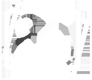image-icon-1-300x258